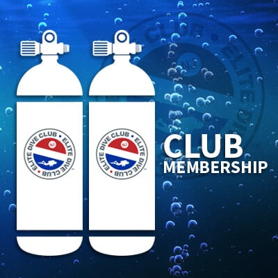 Join the Elite Dive Club Today!